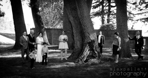 alex pallett wedding photography 12