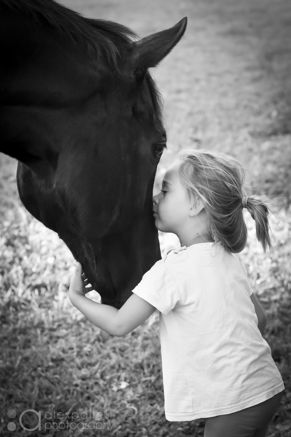 Children and Animals photographer Alex Pallett