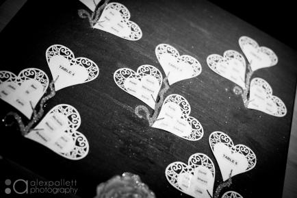 ballarat-buninyong-wedding-photographer-alex-pallettballarat-wedding-photographer-alex-pallett_dsc9939