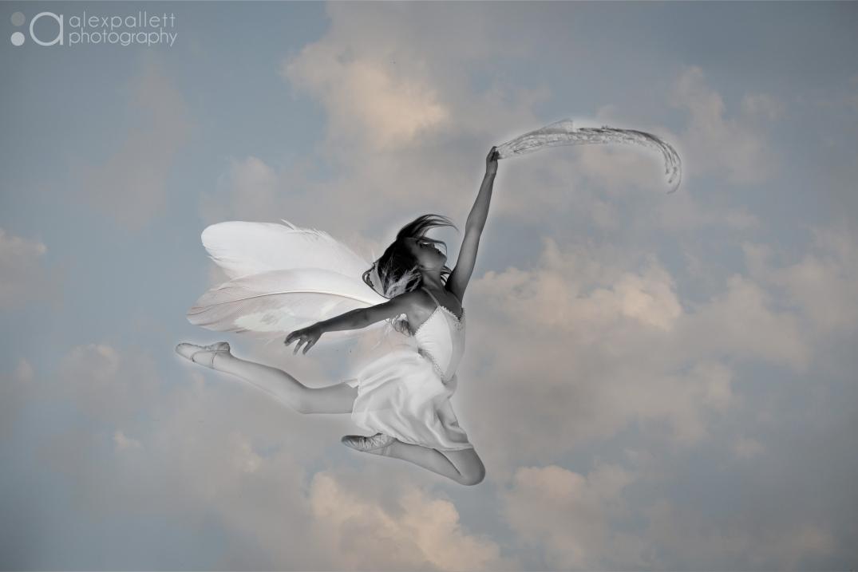 Fly High By Photographer Alex Pallett